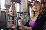 A Day in the Life of Sustainable Beer: New Belgium Brewery